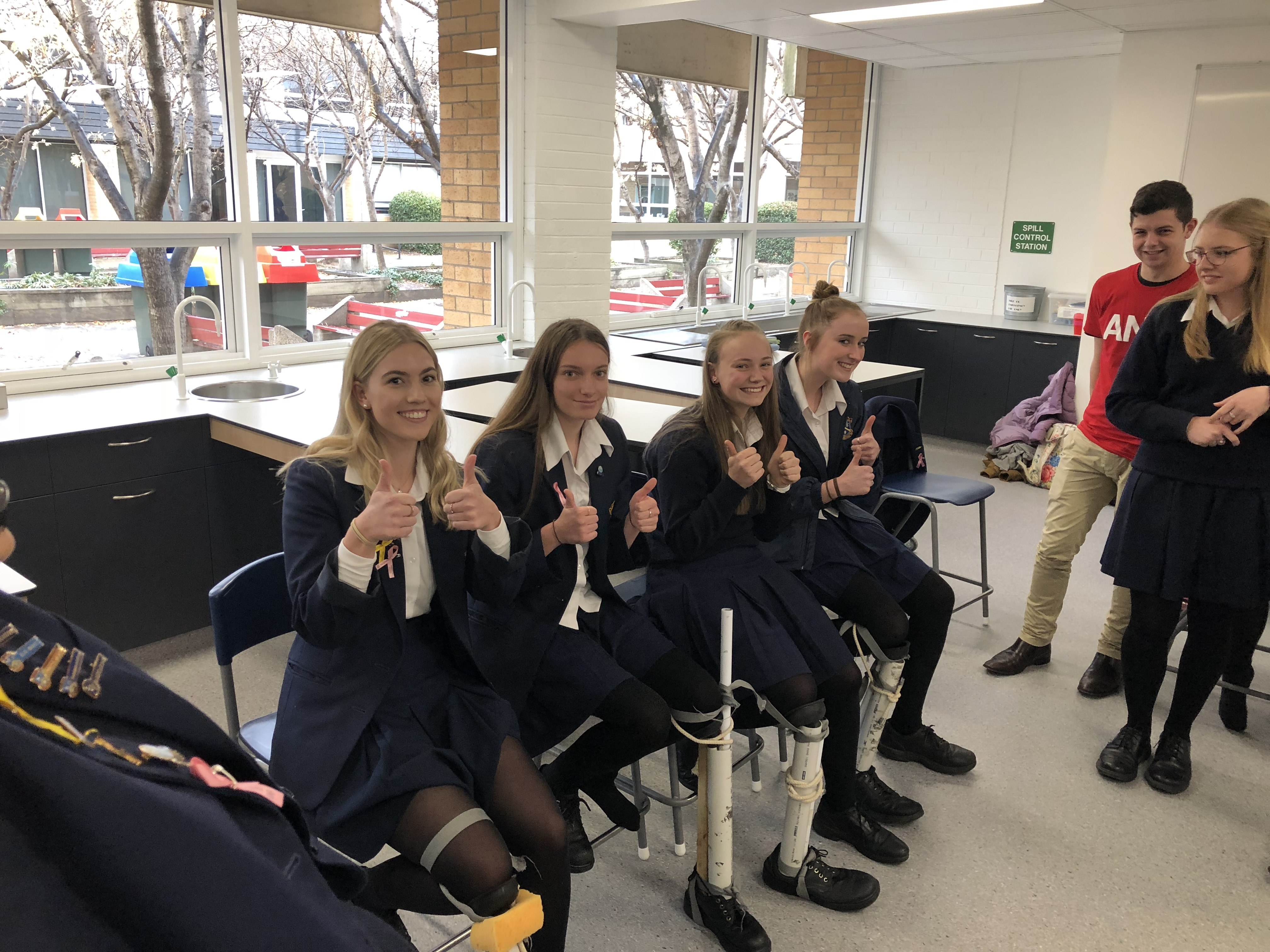 Human Biology students explore the nature of stem cells   Merici ...