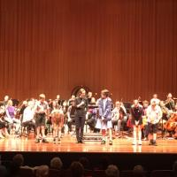 Meet The Music - The Canberra Symphony Orchestra